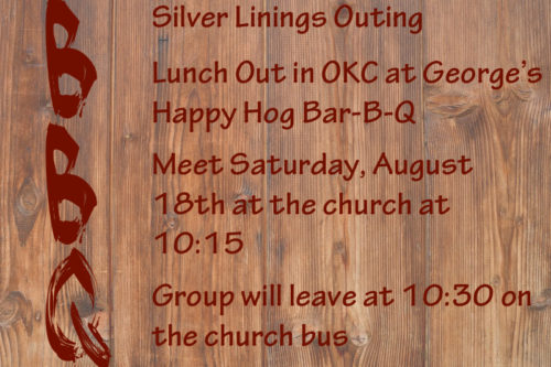 Silver Linings Bar-B-Q Outing